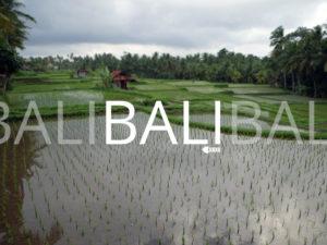 Bali : les meilleures choses à faire, à éviter, Bons Plans et WTF !